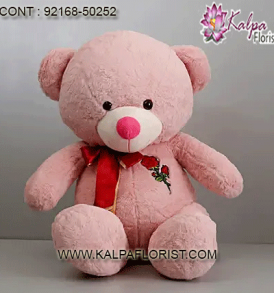 Buy cute teddy bears online for kids at low price in India at Kalpa Florist. Shop & send small, big teddy bear gifts for valentine's day, birthday, anniversary with best offers.