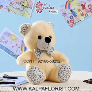Buy Teddy Bear online and send a surprising gift to your loved ones in India. Send a Teddy Bear combined with fresh flowers and chocolate - and congratulate close acquaintances while bringing smiles on their faces