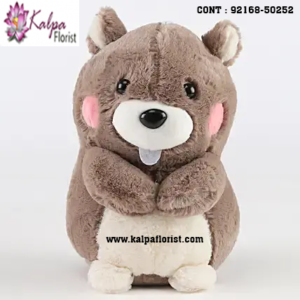 Shop for Teddy Bear Shop Near Me online at best prices in India. Choose from a wide range of Teddy Bear at Kalpa Florist.