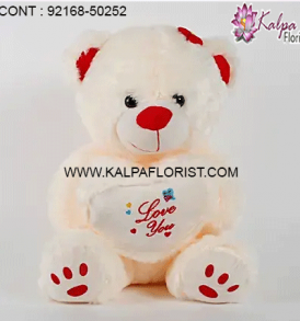 Order Teddy Bear Online in India with Flowers, Cakes, Chocolates & more. Online Teddy Bears, Soft Toys Gift Shop in India.
