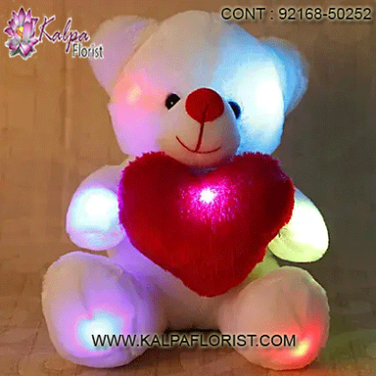 Buy online teddy bears at lowest prices in Sydney on Kalpa Florist. Fast and same day teddy bears delivery to Sydney, Australia.