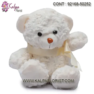 Buy Online Soft Toys Gifts India's Largest Gifting Portal Buy Product's At Lowest Price Just Place Your Order Here Get Same Delivery Service Across India.