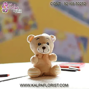 Buy Teddy Bear Online in India at low prices. Shop for wide range of Teddy Bear for kids from top brand on Kalpa Florist.