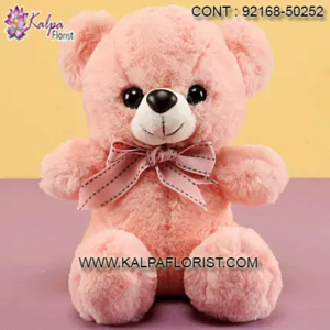 Buy best quality soft toys at Kalpa Florist. Shop online soft toys including stuffed toys, stuffed animals & chocolates and more at best price.