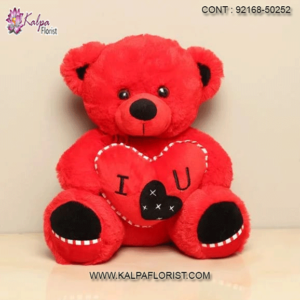 Buy Teddy Bear At Lowest Price - Buy online red teddy bear at lowest price in India on Kalpa Florist - Home Delivery & Cash on Delivery Available.