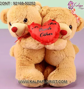 Give a cute gift that's as unique as your love this Valentine's Day. Show your affections with something romantic and extra special from Kalpaflorist.com !