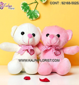 Find the best selection of Romantic Valentine's Day Gifts for Her at Kalpa Florist. Romantic Rewards for the lovely lady in your life!