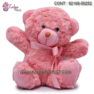 Buy best quality soft toys at Kalpa Florist. Shop online soft toys including Flowers, Chocolates & Dry Fruits, Sweets and more at best price.