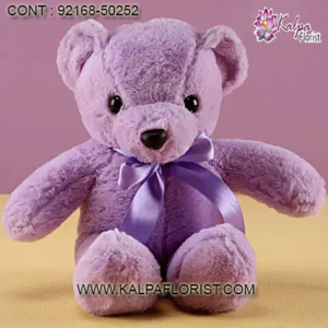 Online Delivery Teddy Bear and Gifts store giving you a choice of wide variety of Teddy bear and other gifts. for more details call us.