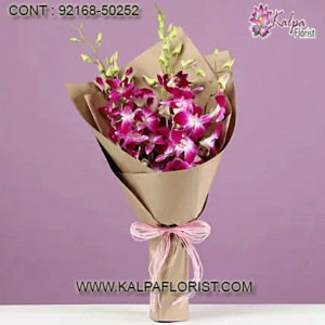 buy flowers in bulk, buy flowers by bulk, flowers in bulk online, flowers in bulk for cheap, where to buy flowers in bulk, bulk buy artificial flowers, flowers in bulk for wedding, flowers in bulk near me, where to buy fake flowers in bulk, buy flowers in bulk online where can i buy cheap flowers in bulk, order flowers in bulk online, buy flower bulbs in bulk, buy flowers in bulk for wedding, buy silk flowers in bulk, buy paper flowers in bulk, buy flowers in bulk cheap, buy artificial flowers in bulk India, Canada, United States, Australia, United Kingdom, New Zealand, United Arab Emirates, Indonesia, Norway Germany, kalpa florist