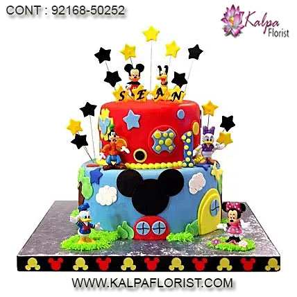 Cartoon Cake For Birthday Cartoon Cake Kalpa Florist