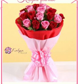 Womens Day Gifts,Women's Day Gifts | Order Flowers And Cake Online Delhi | Kalpa Florist, mother's day gifts online delivery, mothers day gifts online delivery, what can i get delivered for mother's day,  flower and cake cake flour walmart, flower for cake decorating, flower cake ideas, cake flour near me, flower and cake delivery, flower cake with cupcakes, flower and butterfly cake, flower cake pan, flower cake arrangement, flower with cake delivery, flower and birthday cake delivery, order flowers and cake online delhi, online order cake and flowers in delhi, online flowers and cake delivery in delhi valentine week, valentine week days, which day valentine week, valentine week 2020, valentine week events, valentine week list, valentine week list 2020, valentine week day today, valentine week days list , valentine week 7 days, in valentine week today is which day, valentine week which day today, valentine week quotes, valentine week chocolate day, ideas for valentine week, valentine week ideas, valentine week today, valentine week of february, valentine week image, mother's day, mothers day uk, mother's day wish, mothers day cake, mothers day usa, mother day special, mother's day in india, mother day 2022, mother day out near me, mothers day date 2020, mother day england, mothers day australia, mother day gifts online, mothers day uk 2020, women's day gift, women's day gift ideas, women's valentine's day gift ideas, women's day gift ideas in office, best gift for female employees, women's day celebration gifts, woman's day gift subscription, women's day gift hampers, women's day gifts online india, women's day gift options, women's day special gift for wife, women's day gift ideas for wife, women's day gift delivery, women's day gift for friend, best women's day gift ideas flower delivery in punjab, online cake and flower delivery in punjab, flower delivery jalandhar punjab, flower delivery online amritsar punjab, flower delivery in moga punjab, online flower delivery in punjab, online delivery from usa to india, flower delivery to india from australia, flower delivery from canada,  online flower delivery from uk to india, best flowrist in jalandhar punjab, flower point in jalandhar, Women's Day Gifts | Order Flowers And Cake Online Delhi | Kalpa Florist,