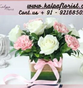Roses For Birthday Send Flowers To India From USA Jalandhar | Kalpa Florist, how to send flowers to india, how to send flowers to india from usa, best website to send flowers to india from usa, send flowers and cake to india from usa, send flowers to india from usa online, send flowers in india from usa, can i send flowers to india, how to send flowers to someone in india from usa, roses for birthday, roses on birthday, roses for a birthday, roses birthday cake, bouquet of roses for birthday, roses themed birthday party, roses with birthday wishes, roses for birthday wishes, roses for birthday gift, red roses for birthday, roses happy birthday images, yellow roses for birthday, roses birthday decorations, what to send instead of flowers for birthday, what color roses for birthday,. buy roses birthday theme, color of roses for birthday, 60 roses for 60th birthday, white roses for birthday, 30 roses for 30th birthday, beautiful roses for birthday, roses for 50th birthday, what flower represents 50th birthday, roses for her birthday, happy birthday roses quotes, roses for 60th birthday, 80 roses for 80th birthday, what color roses for 70th birthday, 50 roses for 50th birthday, roses for 70th birthday, 21 roses for 21st birthday, 60th birthday roses, roses and balloons for birthday, red roses for birthday wishes, what color roses for daughters birthday, how many roses to give for birthday, roses for 40th birthday, 7 roses for 7th birthday, birthday roses for a friend, best roses for a birthday gift, birthday roses quotes, how many roses for birthday, roses for 18th birthday, what is the best flower for birthday, best roses for birthday, roses for birthday presents, 18 roses for 18th birthday, roses for 80th birthday, send roses for birthday, roses for your birthday, what flower represents your birthday, roses for mama today's her birthday, roses for girlfriend birthday, are roses good for birthdays, red roses for birthday girl, Roses For Birthday | Send Flowers To India