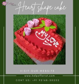 Heart Shape Cake Near Me Online Cake Delivery Jalandhar Near MeFind : Heart Shape Cake Near Me | Online Cake Delivery Jalandhar | Kalpa Florist, online cake delivery jalandhar, online cake and flower delivery in jalandhar, online cake delivery in jalandhar punjab, online birthday cake delivery in jalandhar, online cake and gifts delivery in jalandhar, best online cake delivery in jalandhar, online cake delivery in jalandhar cantt, eggless cake online delivery in jalandhar, best online cake delivery in jalandhar, online delivery of cake in jalandhar, online cake delivery in jalandhar city, online cake delivery jalandhar, online cake and flower delivery in jalandhar heart shape cake near me, heart shaped cake pan near me, how to make a heart shaped cake without a heart shaped pan, where can i buy a heart shaped cake pan, heart shaped cookie cake near me, how to make a heart shaped cake pan, heart shape cake shop near me, where can i buy a heart shaped cake, heart shape cake tin near me, Heart Shape Cake Near Me | Online Cake Delivery Jalandhar | Kalpa Florist