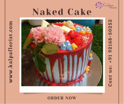 Naked Drip Cake Send Cake For Birthday jalandhar