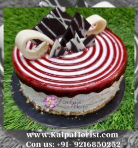 Blueberry Cheesecake | Order Cake Online Near Me | Kalpa Florist, order cake online near me, order cake online in india, order birthday cake online near me, birthday cake online order near me, order cake online in ludhiana, order cake online in chandigarh, order cake online in hyderabad, order cake online in chennai, order cake online in delhi, online birthday cake delivery near me, order cake online in ghana, order cake online in patna, order cake online in jamshedpur, order a birthday cake online near me, order cake online in hyderabad india, order custom cake online near me, order cake online in mumbai, order birthday cake online for delivery near me, buy order cake online in indore, order cake online in kanpur, order cake online in vijayawada, can we order cake online, rasmalai cake order online near me, order cake online in warangal, where to order cakes online near me, order cake online in meerut, order cake online in noida, where can i order cake online near me, buy cake online near me, order cake online in belgaum, order cake online in kolkata, how to order cake online near me, order cake online in hisar, order ice cream cake online near me, Blueberry Cheesecake | Order Cake Online Near Me | Kalpa Florist