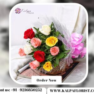 Special Mixed Roses Bouquet | Flower Delivery Near Me | Kalpa Florist, flower delivery near me, flower delivery near me same day, flower shop near me delivery, flower delivery near me today, local flower delivery near me, flower delivery service near me, flower delivery places near me, best prices for flower delivery, flower arrangements delivery near me, best flower delivery near me, fresh flower delivery near me, sympathy flowers delivery near me, flower bouquet delivery near me, peony flower delivery near me, what to send instead of flowers for birthday, balloon and flower delivery near me, cake and flower delivery near me, can i get flowers delivered today, flower delivery near me cheap, flower delivery mother's day near me, how much is flower delivery, weekly flower delivery near me, valentines flower delivery near me, flower delivery driver jobs near me, part time flower delivery jobs near me, flower home delivery near me, best local flower delivery, how to get flowers delivered to someone, flower delivery near me now, annual flower delivery near me, last minute flower delivery near me, affordable flower delivery near me, can i have flowers delivered today, is there any florists open near me, where can i order flowers for delivery, order flower delivery near me, how do i get flowers delivered to someone, buy flower delivery near me free delivery, flower gift delivery near me, easter flower delivery near me, flower bouquet online delivery near me, can you get flowers delivered same day, flower delivery near me next day, flower delivery ludhiana, exotic flower delivery near me, flower delivery near me open now, quick flower delivery near me, rose flower delivery near me, Special Mixed Roses Bouquet | Flower Delivery Near Me | Kalpa Florist